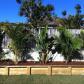 Collaroy,  Sydney (after)